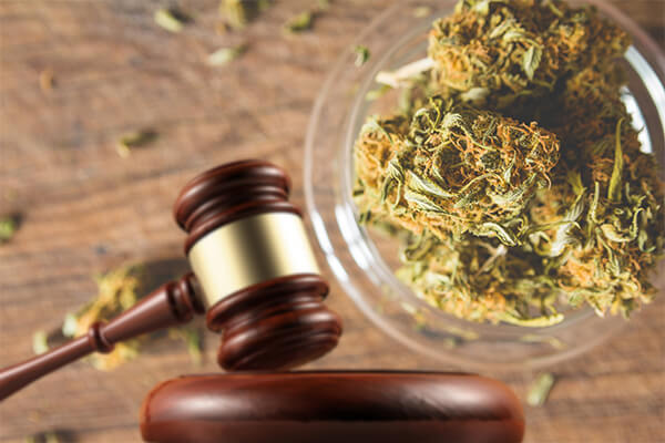 Marijuana Laws, Marijuana Laws Fort Worth TX, Marijuana Laws in Fort Worth