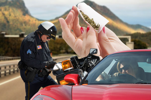 Marijuana Busts on I-35W, Marijuana Busts on I-35W Lawyer, Marijuana Busts on I-35W Attorney, Marijuana Busts on I-35W in Fort Worth TX